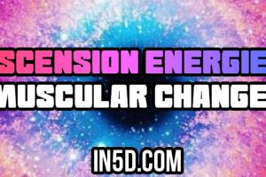 Ascension Energies – Muscular Changes
