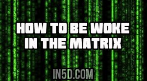 How To Be Woke In The Matrix