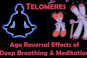TELOMERES: Age Reversal Effects Of Deep Breathing & Meditation
