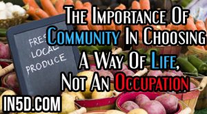 The Importance Of Community In Choosing A Way Of Life, Not An Occupation