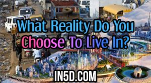 What Reality Do You Choose To Live In?