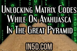 Unlocking Matrix Codes While On Ayahuasca In The Great Pyramid