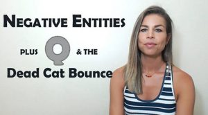 Negative Entities Plus Q & The Dead Cat Bounce