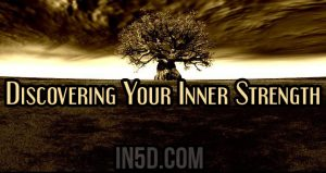 Discovering Your Inner Strength