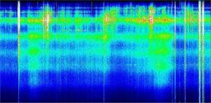Schumann Resonance Report August 30, 2018: TIRED!