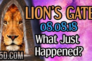 8/8 Lion's Gate – What Just Happened?