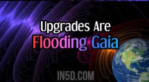 Upgrades Are Flooding Gaia