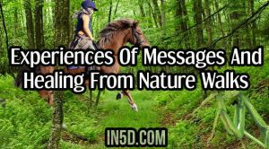 Experiences Of Messages And Healing From Nature Walks
