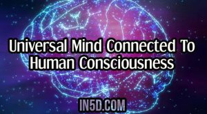 Universal Mind Connected To Human Consciousness
