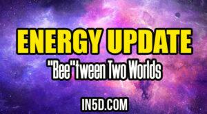 """Energy Update - """"Bee""""tween Two Worlds"""