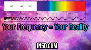Your Frequency = Your Reality
