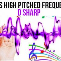 DEC 7, 2018 HIGH PITCHED FREQUENCY KEY D SHARP