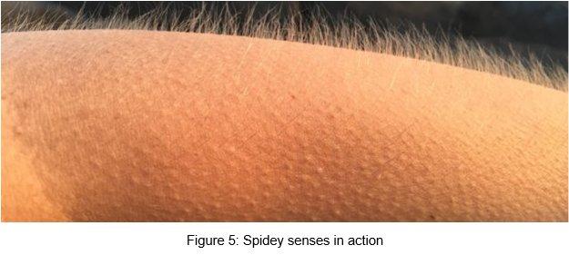 Figure 5: Spidey senses in action