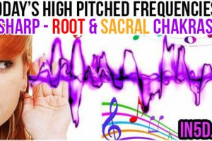 FEB 19, 2018 HIGH PITCHED FREQUENCY KEY C#- ROOT & SACRAL CHAKRAS