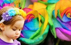 Ascension Vision: Rainbow Flower Children