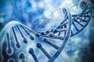 DNA – Transcription Of Light
