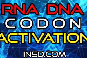 1 Hour DNA RNA Codon Activation Mantra