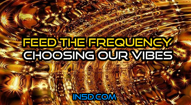 Feed the Frequency – Choosing our Vibes