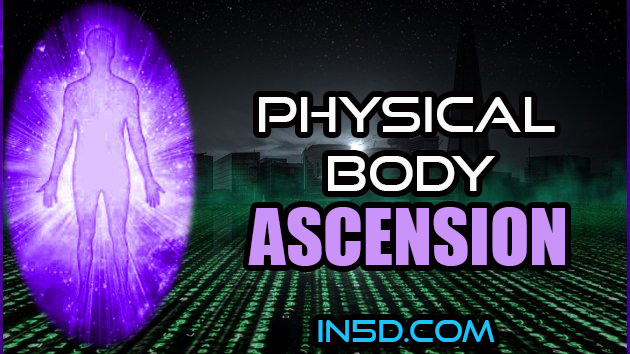 The New Matrix Is Allowing Us To Ascend In Consciousness In A Physical Body