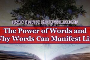 The Power of Words and Why Words Can Manifest Life