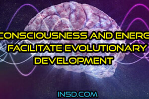 How Consciousness And Energy Facilitate Evolutionary Development