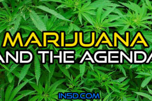 Marijuana And The Agenda