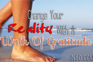 Change Your Reality With A Walk Of Gratitude