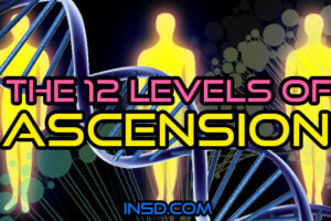 The 12 Levels of Ascension