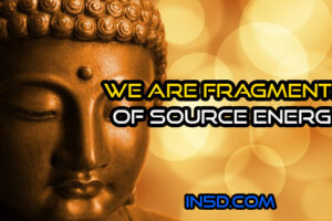 We Are Fragments Of Source Energy