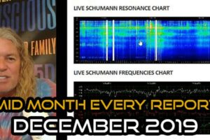 Mid Month Energy Report December 2019
