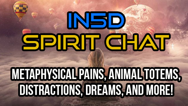 In5D Spirit Chat Metaphysical Pains, Animal Totems, Distractions, Dreams, And More!
