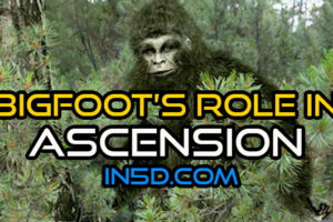 Bigfoot's Role In Ascension
