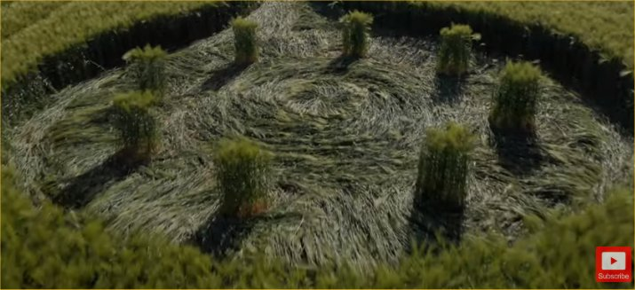 Coronavirus Crop Circle - They KNOW, They're WATCHING!
