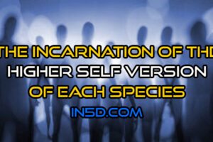 The Incarnation Of The Higher Self Version Of Each Species