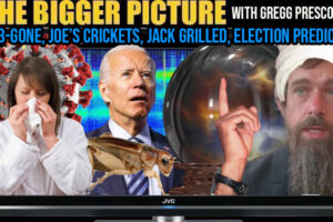 FLU B GONE, JOE'S CRICKETS, JACK, ELECTION PREDICTION THE BIGGER PICTURE WITH GREGG PRESCOTT