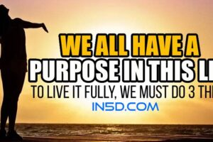 We All Have A Purpose In This Life; To Live It Fully, We Must Do 3 Things