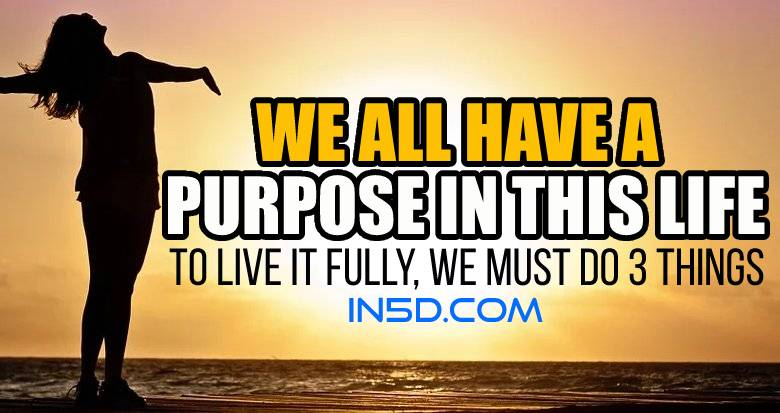 We All Have A Purpose In This Life
